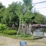 CIMG8421